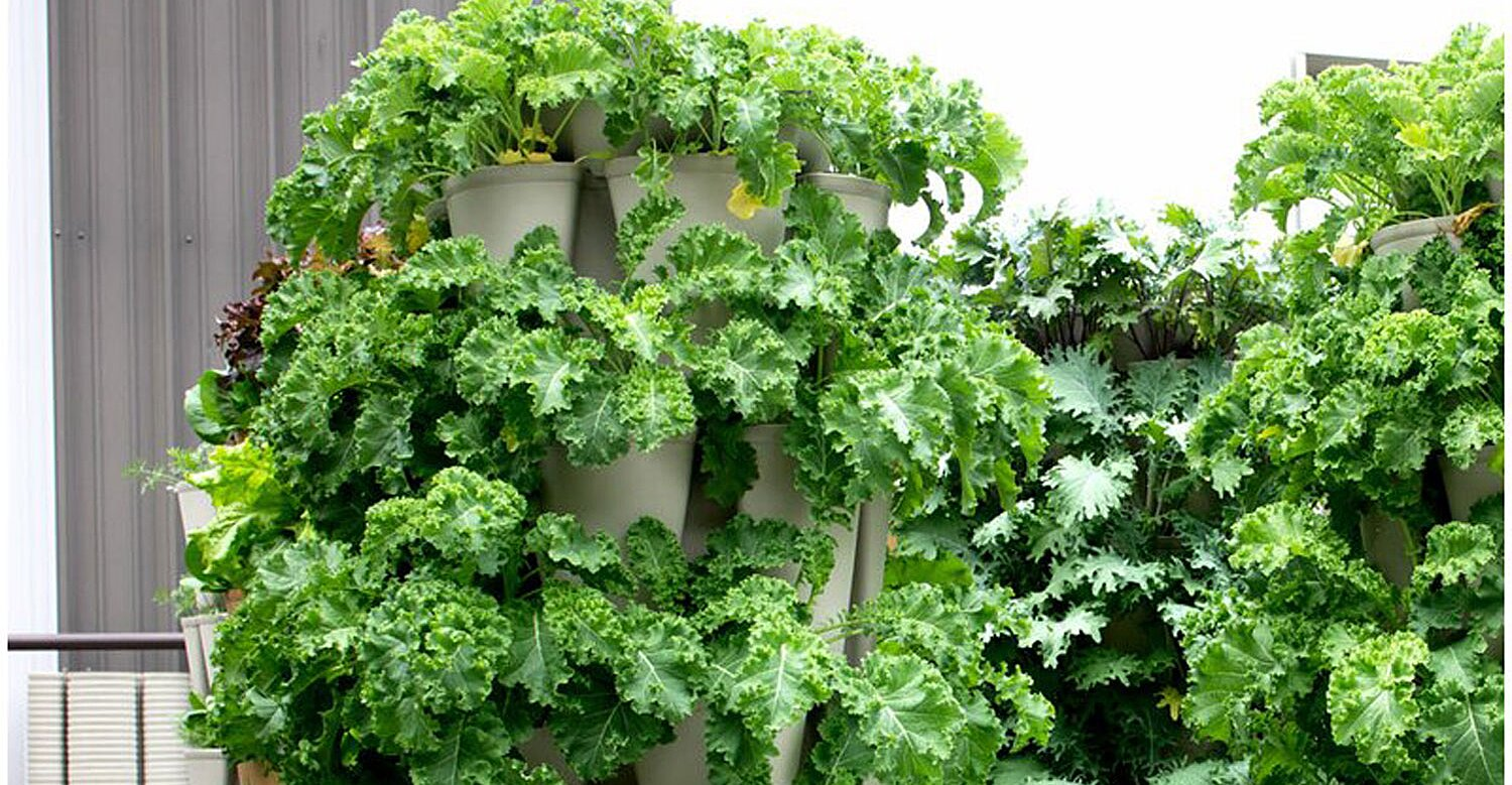 You Can Grow up to 30 Plants in These Space-Saving Vertical Garden Towers