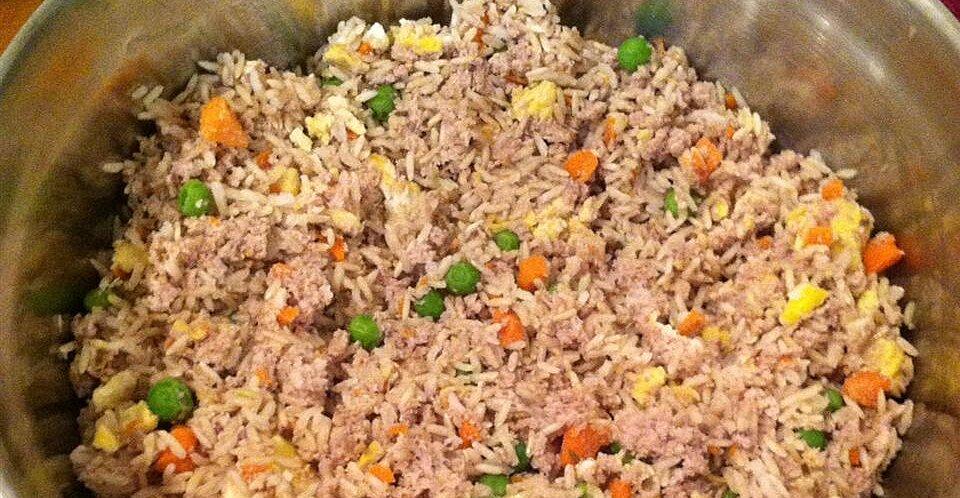 Homemade Dog Food Recipe Allrecipes