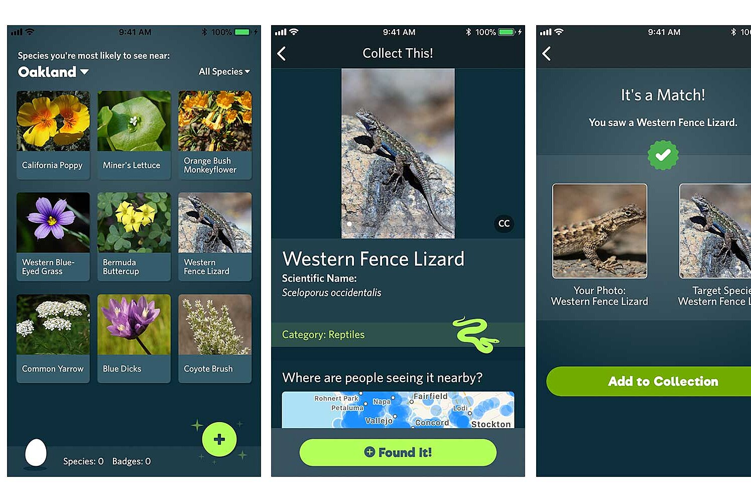 This New App Will Help You Identify the Plants and Animals You See ...