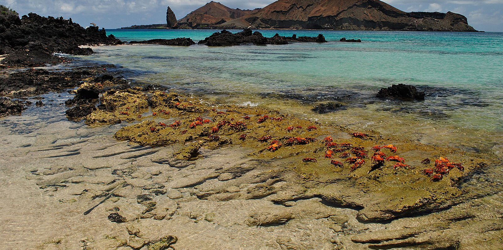 Galapagos Islands Home to World's First Green Airport