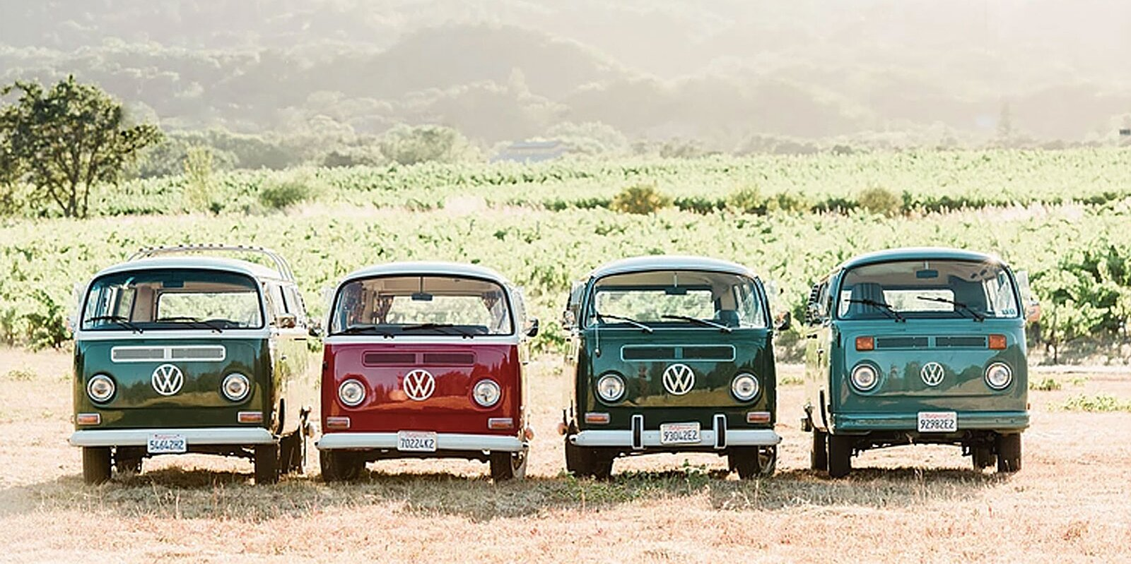 You Can Winery Hop Through Napa and Sonoma in a Vintage VW Bus