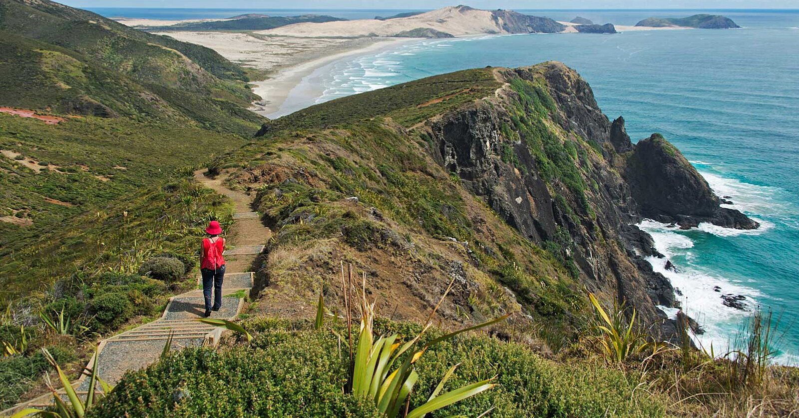 The Best Time to Visit New Zealand in 2018