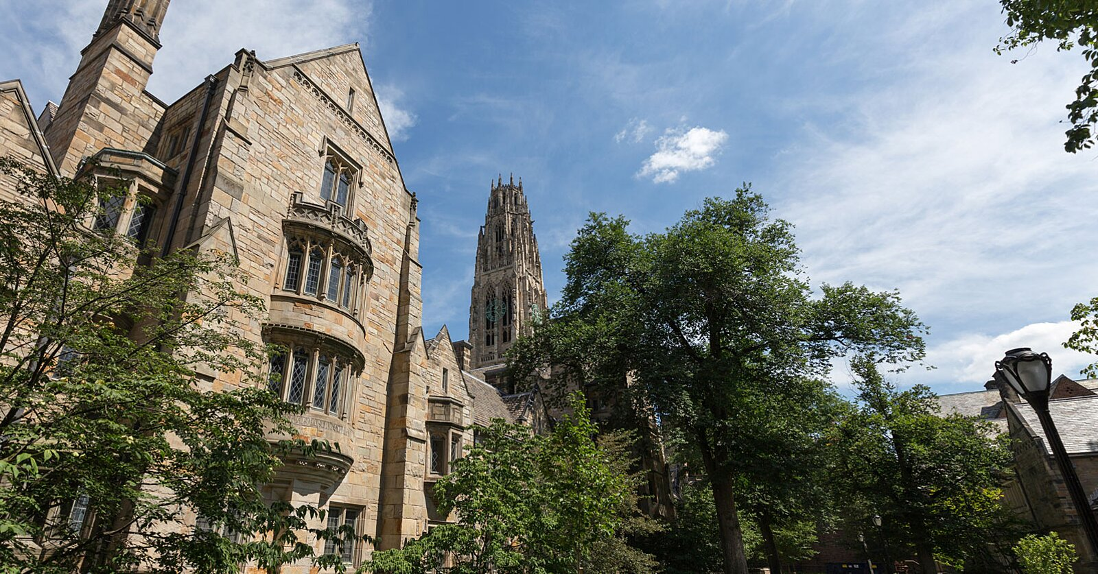 Yale's Popular Happiness Class Is Now Available Online for Free — Here's What It Entails
