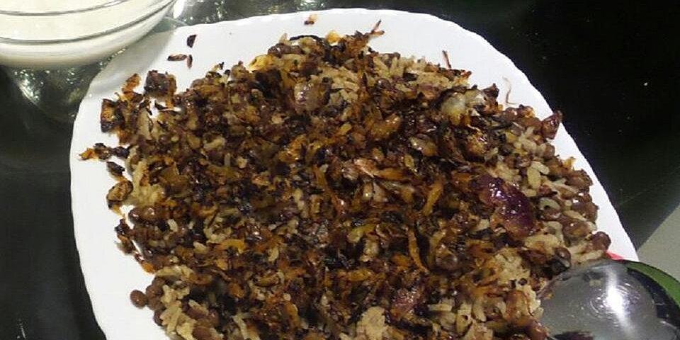 mujaddara arabic lentil rice recipe