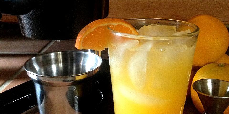 orange crush fresh squeezed orange and vodka cocktail recipe