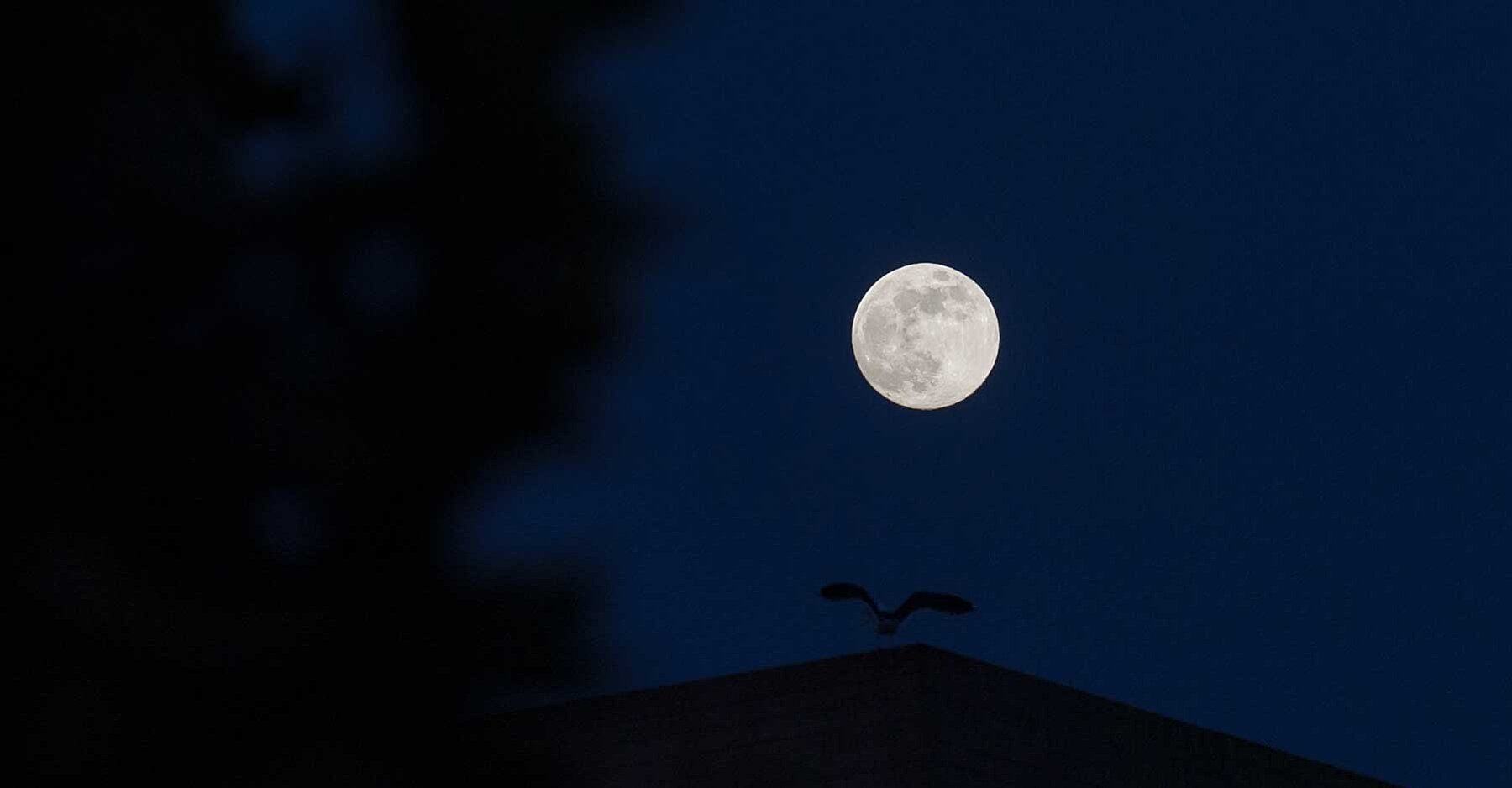 A Rare Halloween Blue Moon Will Light Up The Sky On October 31 Travel Leisure