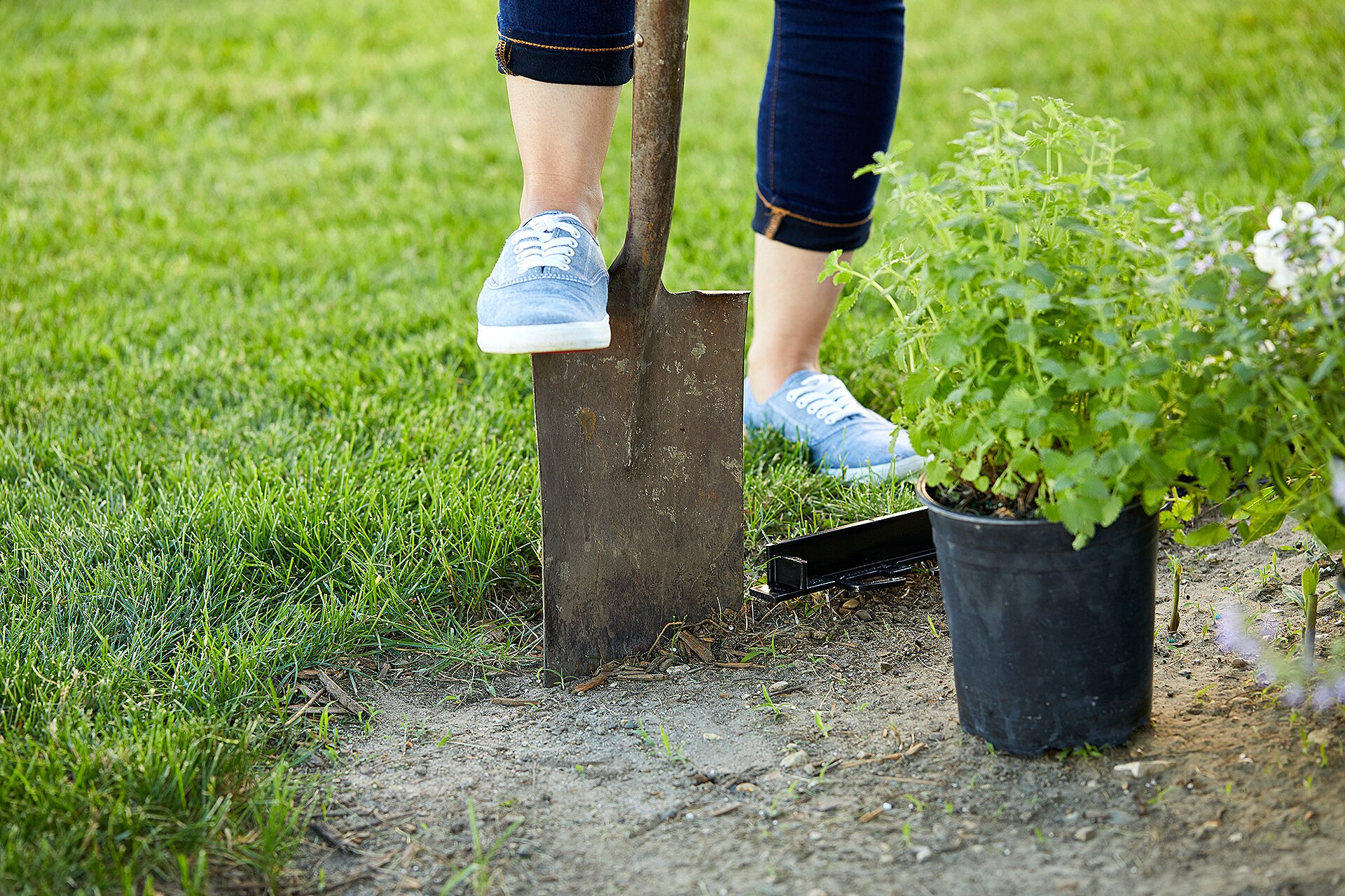 How To Build A New Flower Bed Better Homes Gardens