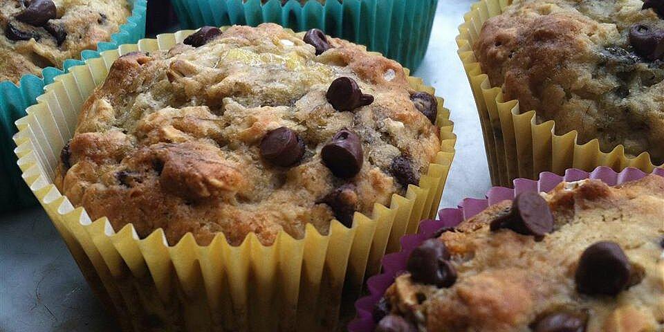 healthy banana chocolate chip oat muffins recipe