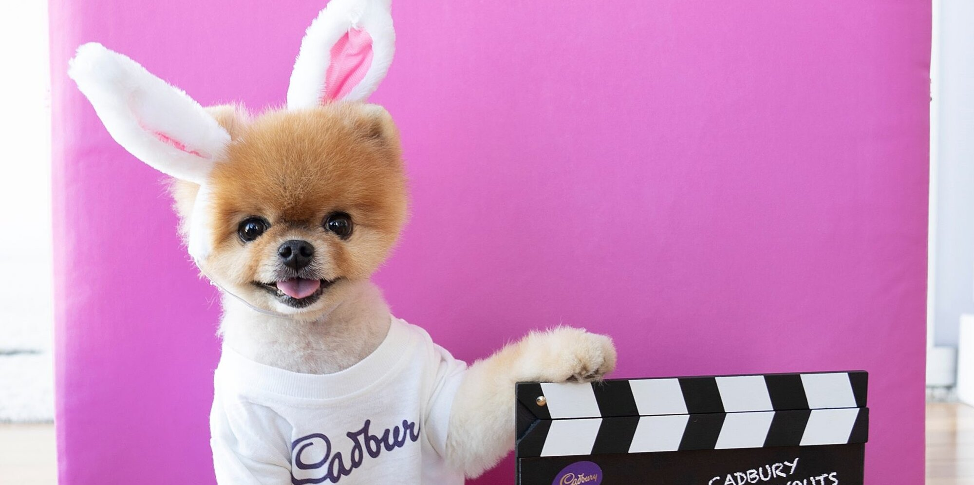 how to enter cadburys contest for an easter mascot