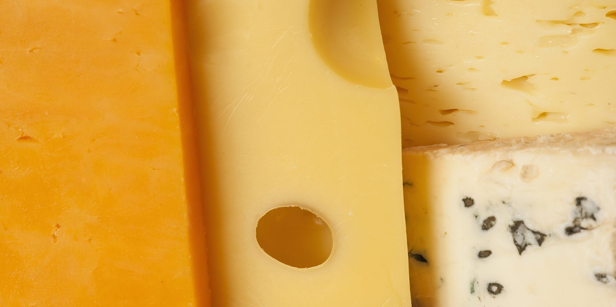 how long does cheese last in the fridge