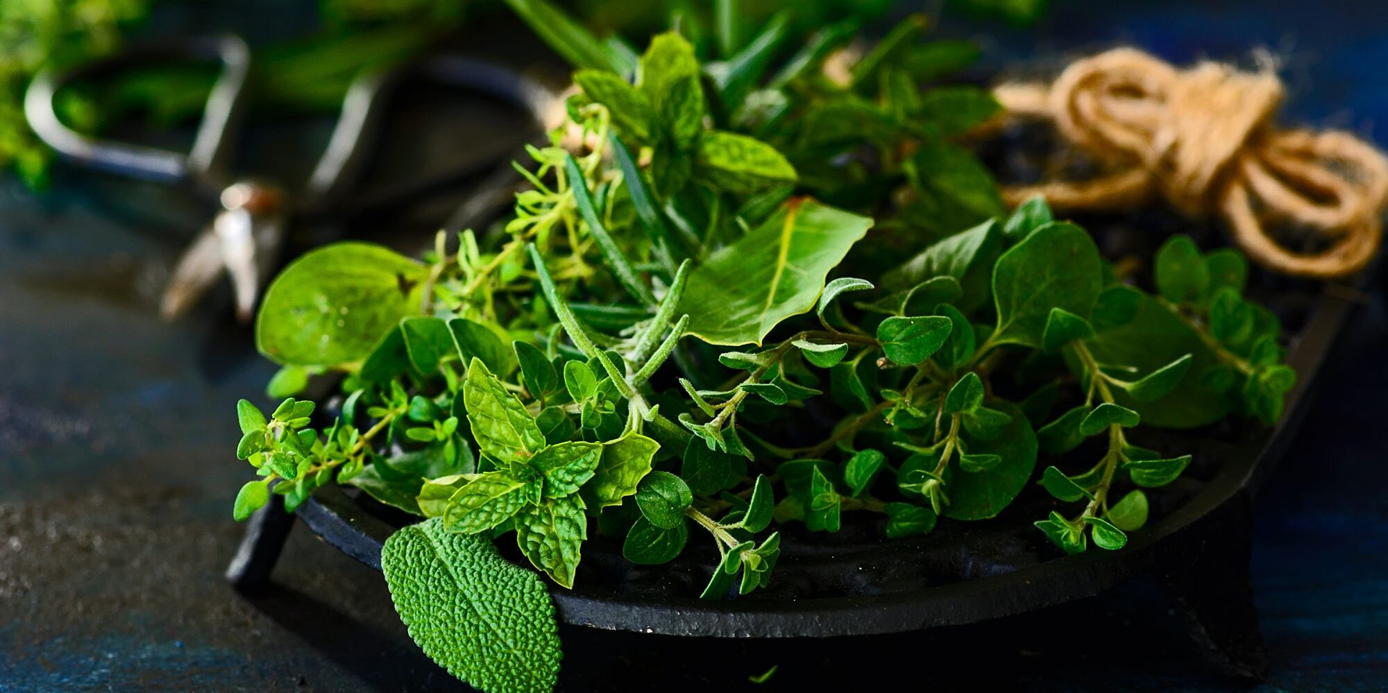 the 7 herbs you should be growing in your global herb garden