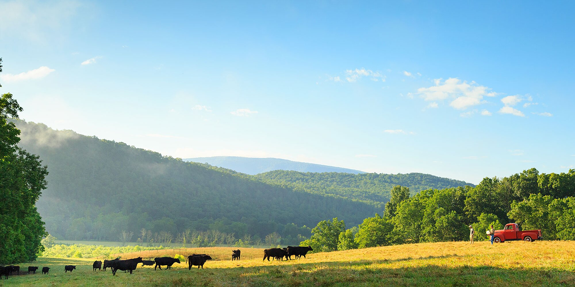 Take an Idyllic Vacation That Supports an Independent Farmer