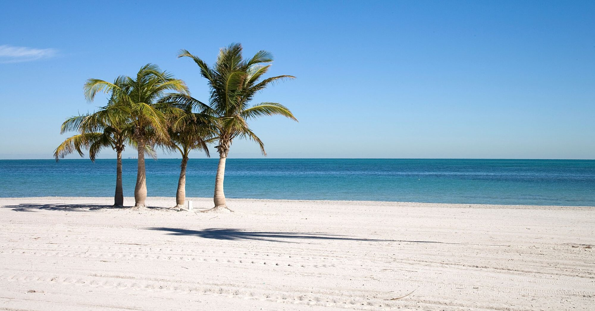 10 Florida Beaches That Look Like the Caribbean