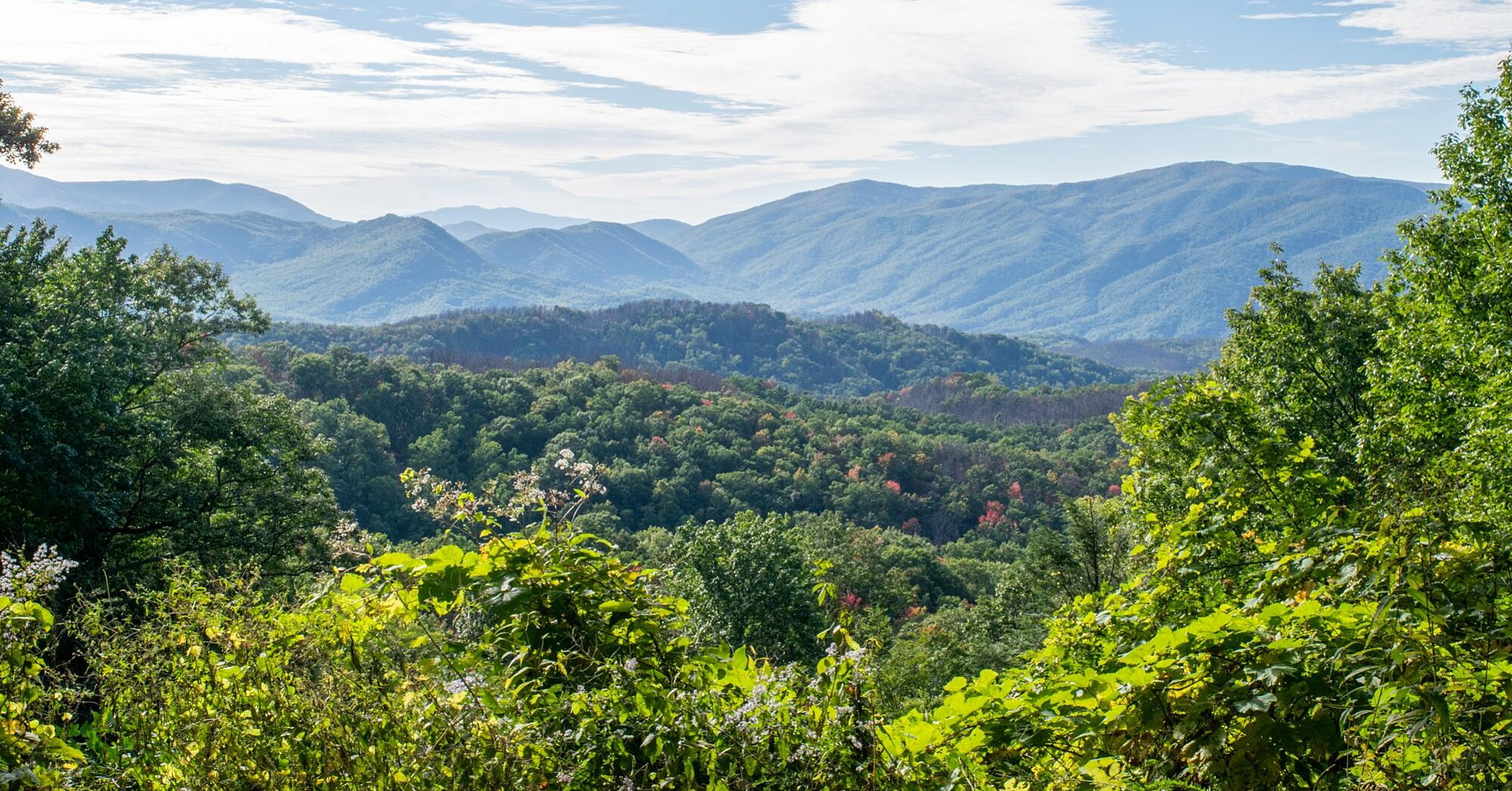 The Best Southern Mountain Towns for Retirement