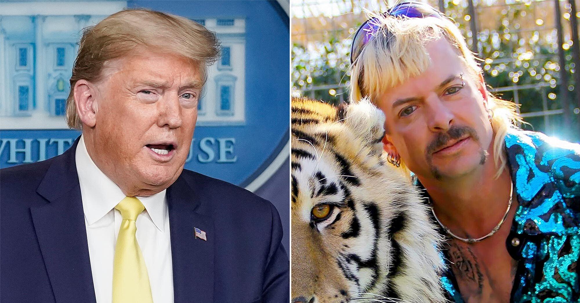 Trump asked if he'd pardon Joe Exotic during coronavirus press briefing