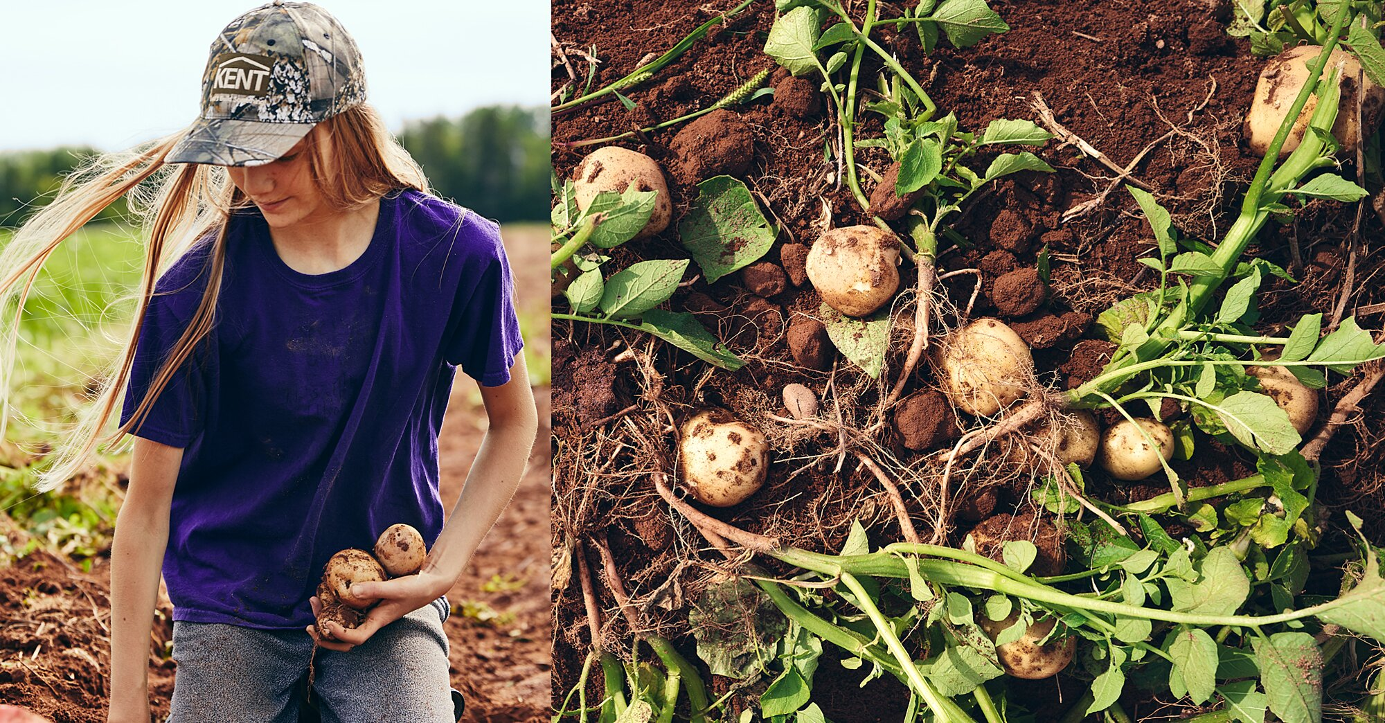 The World's Best Spud Recipes Come from This Potato Paradise