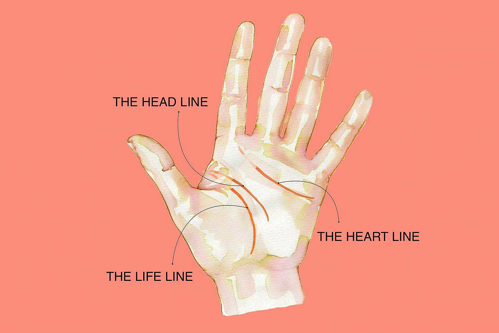 Know More about your Palms: https://www.realsimple.com