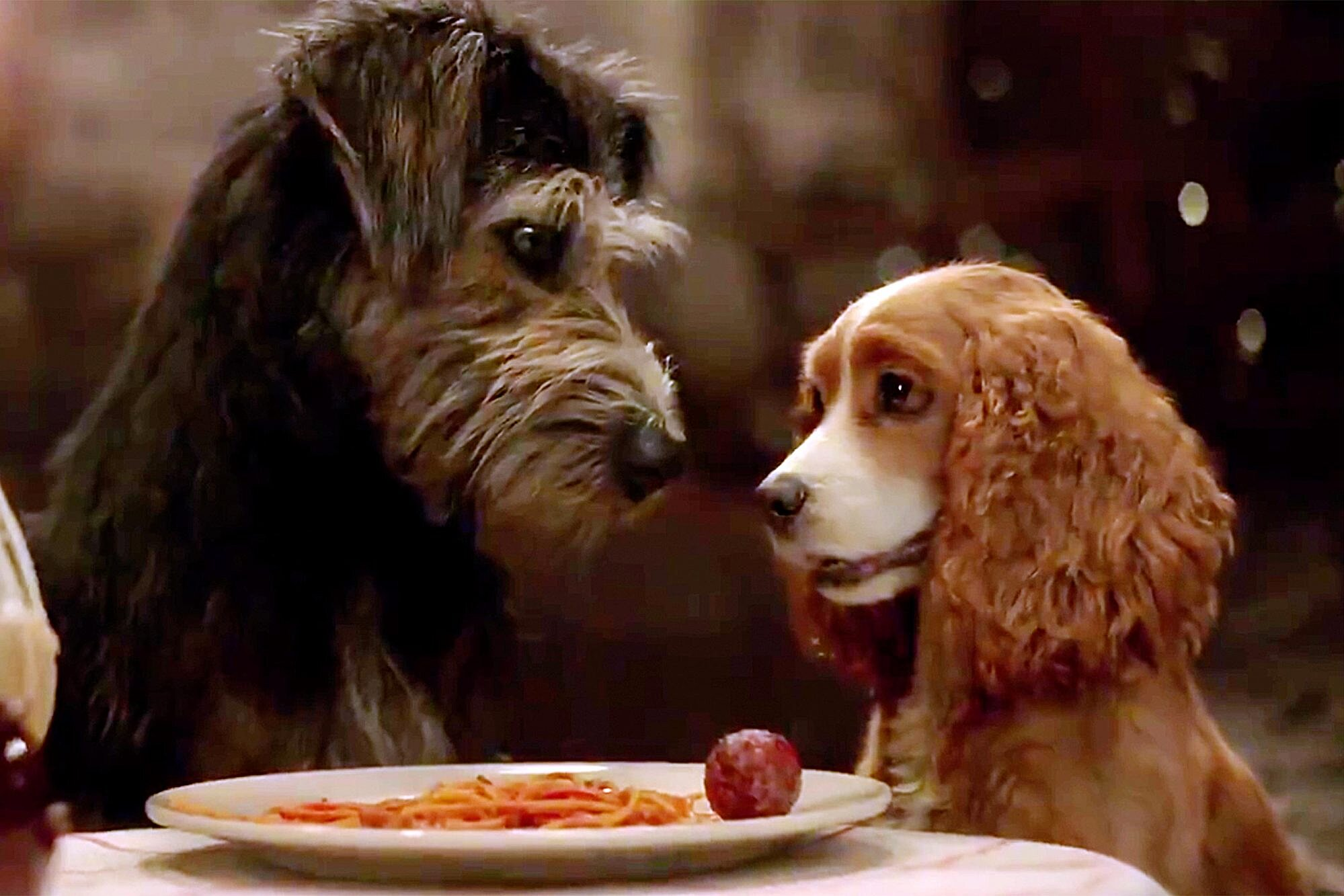 First Live Action Lady And The Tramp Trailer Released By Disney Ew Com