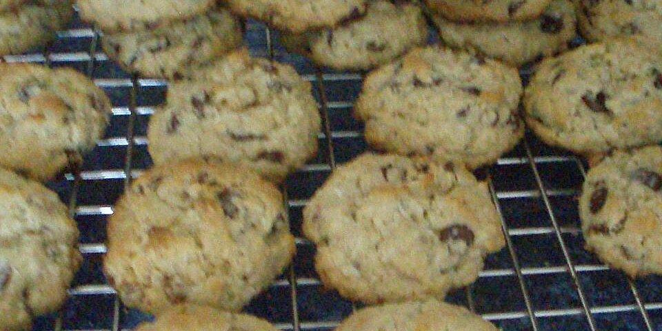 chocolate coconut lunchbox cookies recipe
