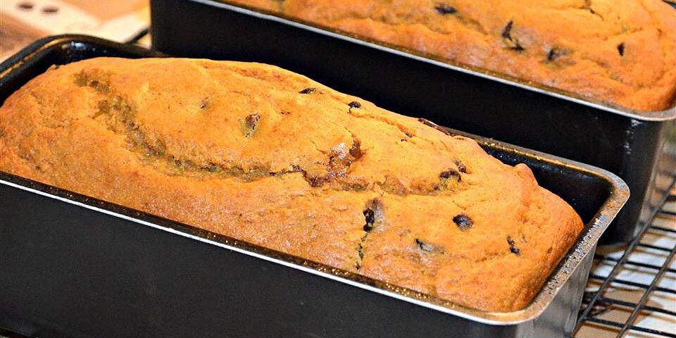 chocolate chip and pumpkin bread recipe