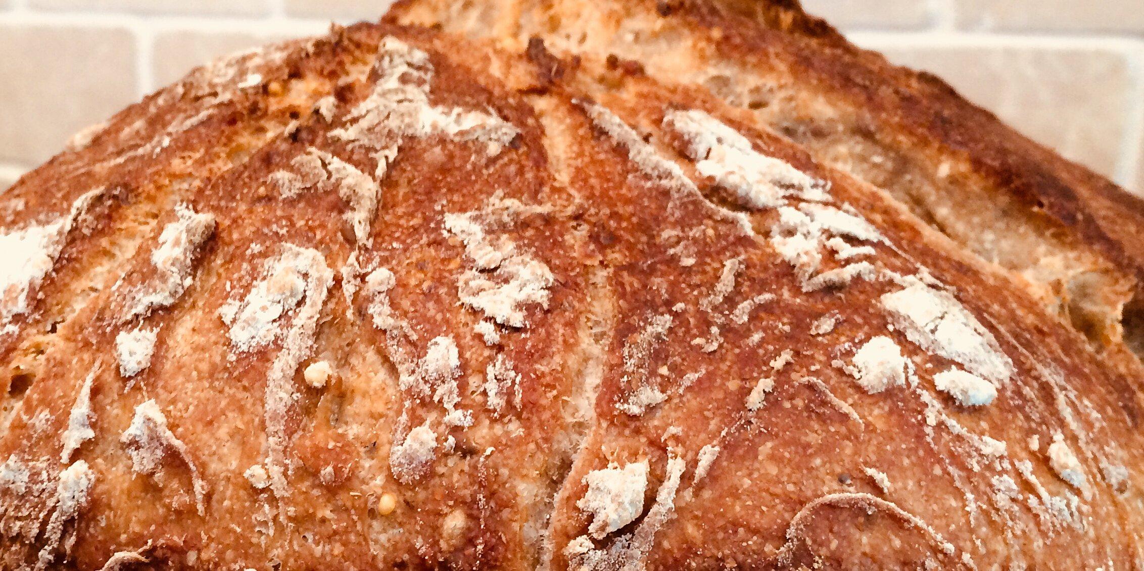better than bakery no knead sourdough recipe