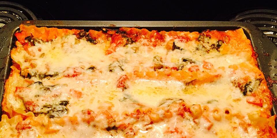 spicy vegetarian lasagna recipe