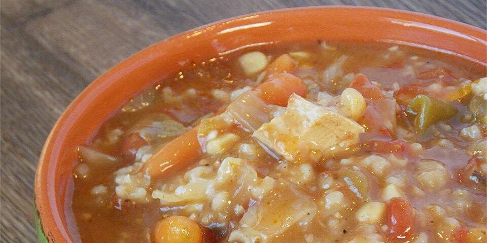 zippy and tangy turkey rice soup recipe