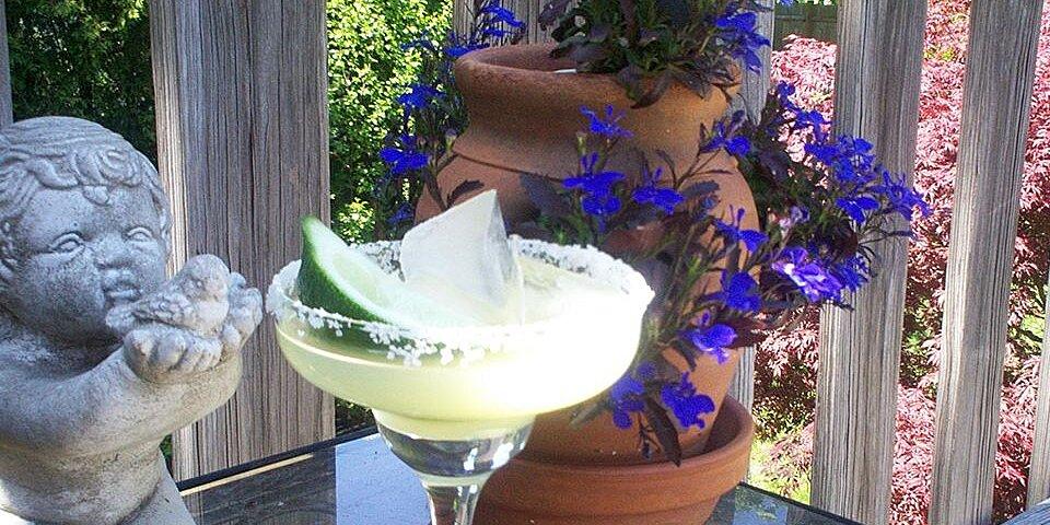 austin margarita aka mexican martini recipe