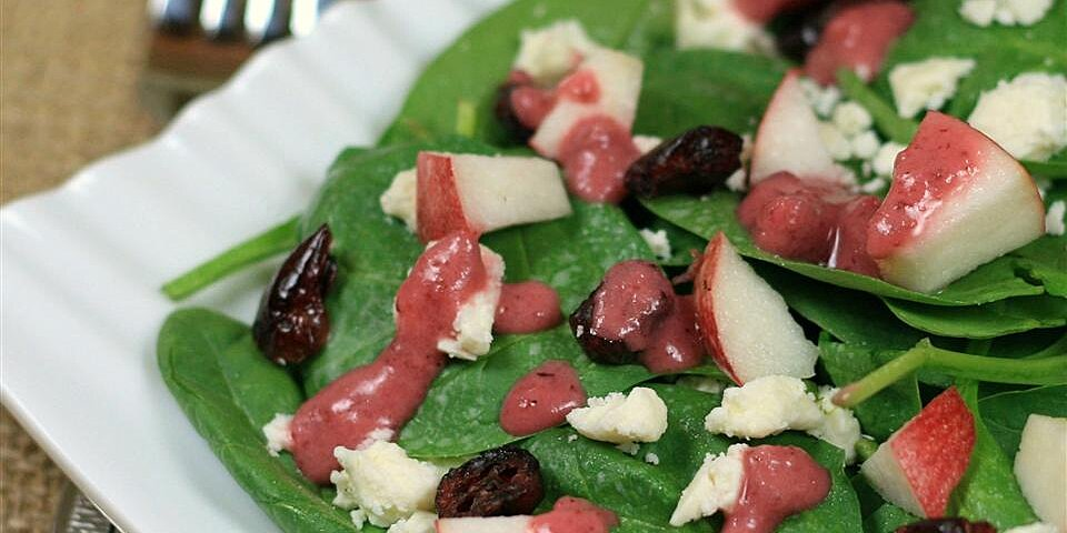 spinach salad with pomegranate cranberry dressing