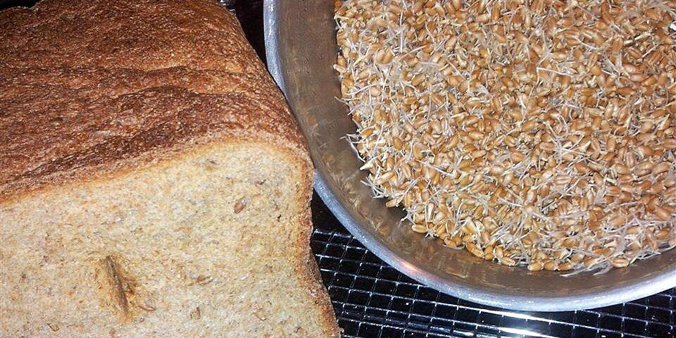 essene bread for the bread machine recipe