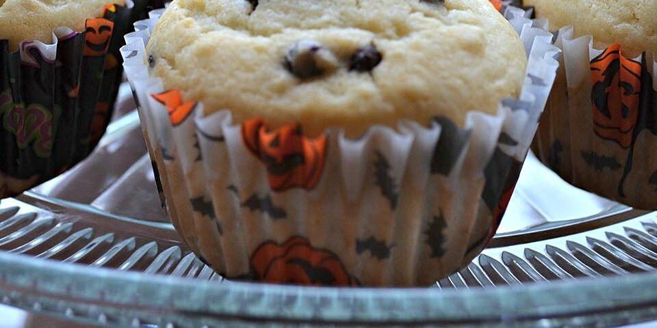 noras special chocolate chip muffins recipe