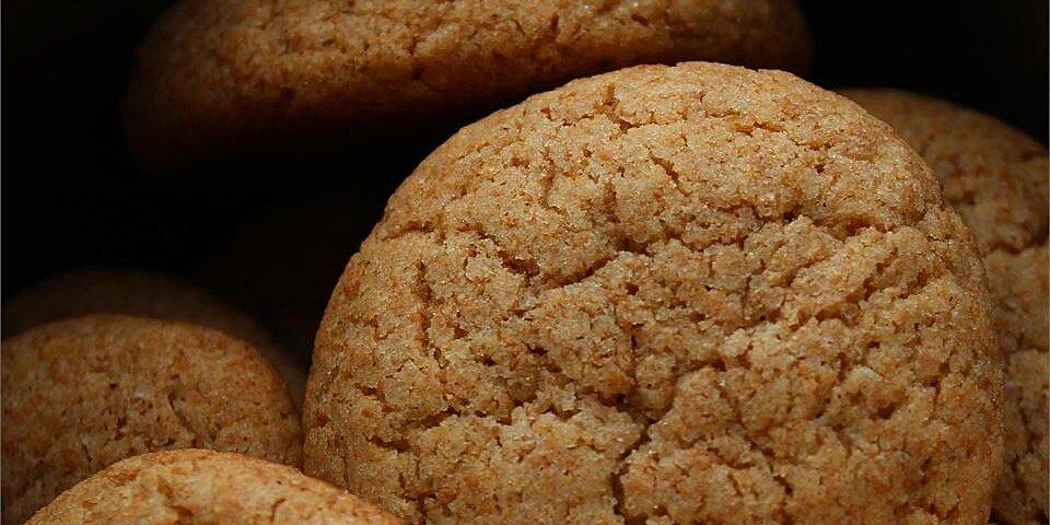 whole wheat snickerdoodles i recipe