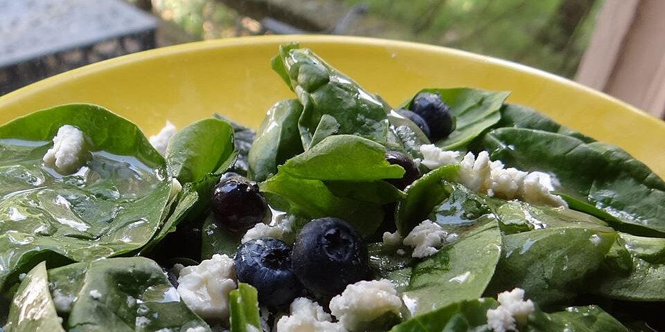 blueberry spinach salad recipe