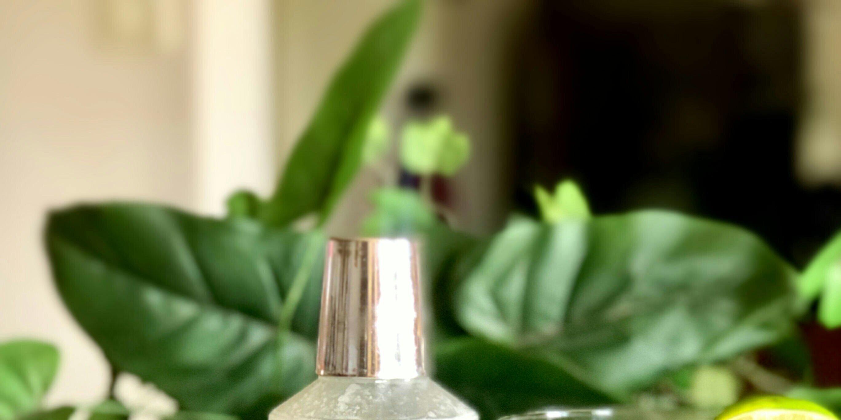 coconut lime martinette alcohol free recipe