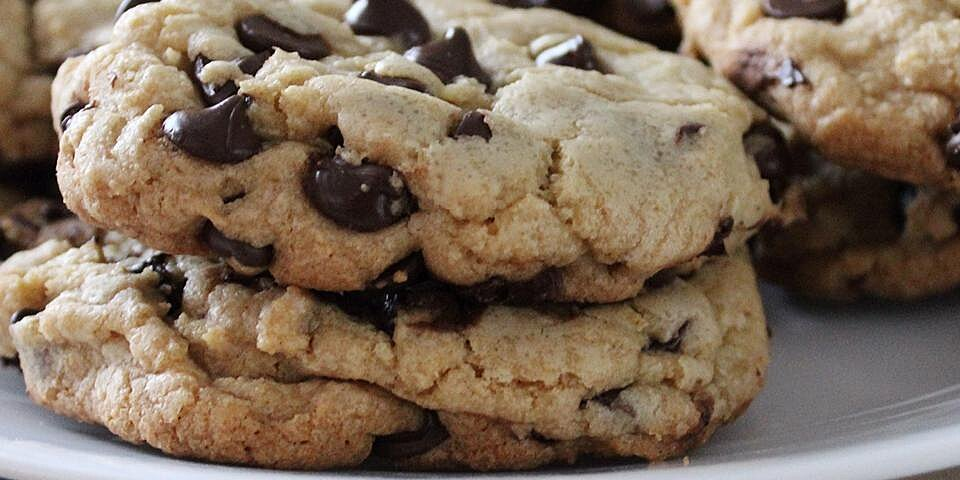 best big fat chewy chocolate chip cookie recipe