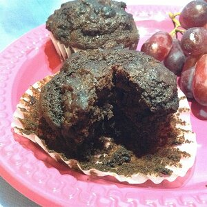 Probiotic Chocolate Chocolate Chip Muffins