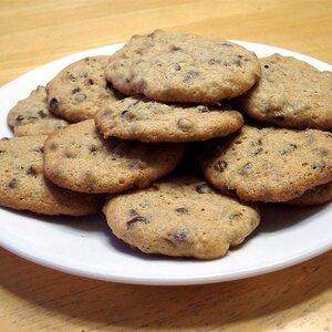 Mini Chip Sugar Cookies