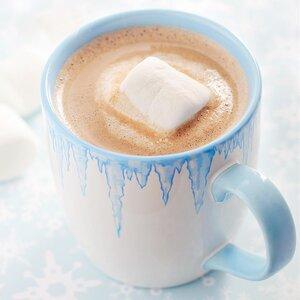 Coconut Hot Cocoa