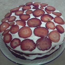 Simple Chocolate Strawberry Shortcake