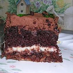 Chocolate Earthquake Cake II