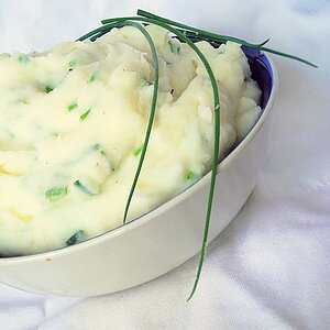 Sour Cream and Chive Mashed Potatoes