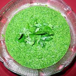Pasta de cilantro