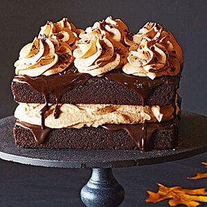 Chocolate Pumpkin Cake
