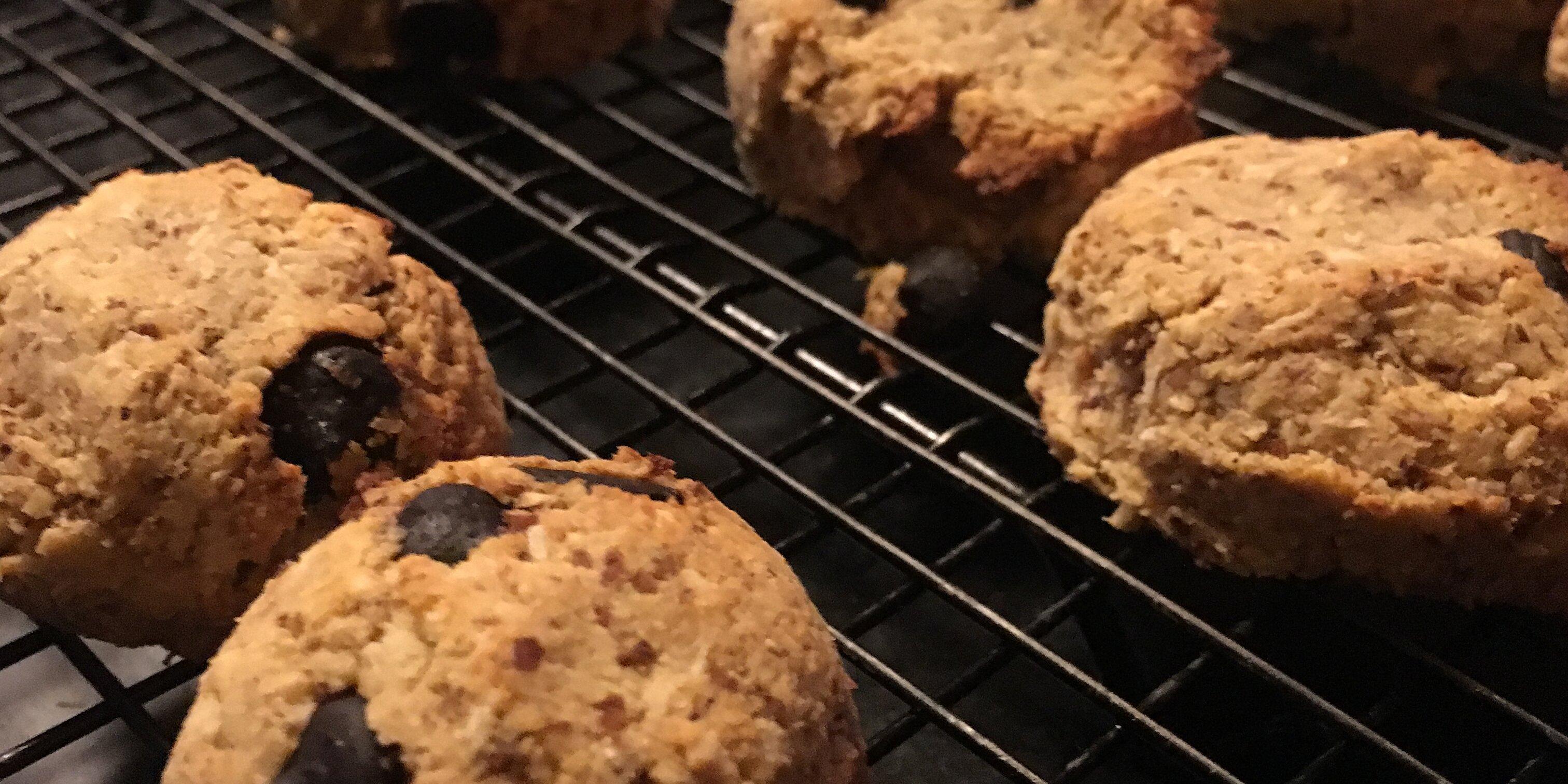 paleo coconut dark chocolate chip cookies recipe