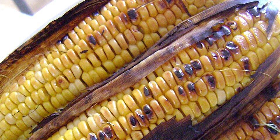 miss betties zesty grilled corn recipe
