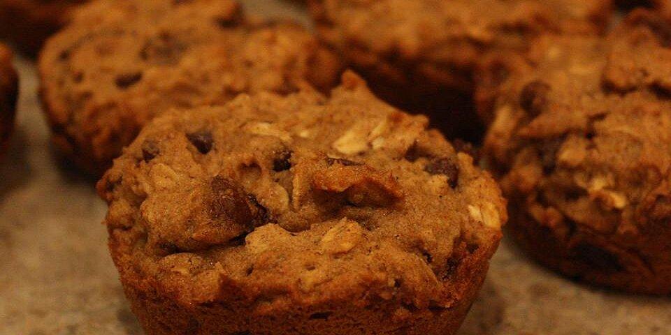 gluten free choc chip oatmeal muffins recipe
