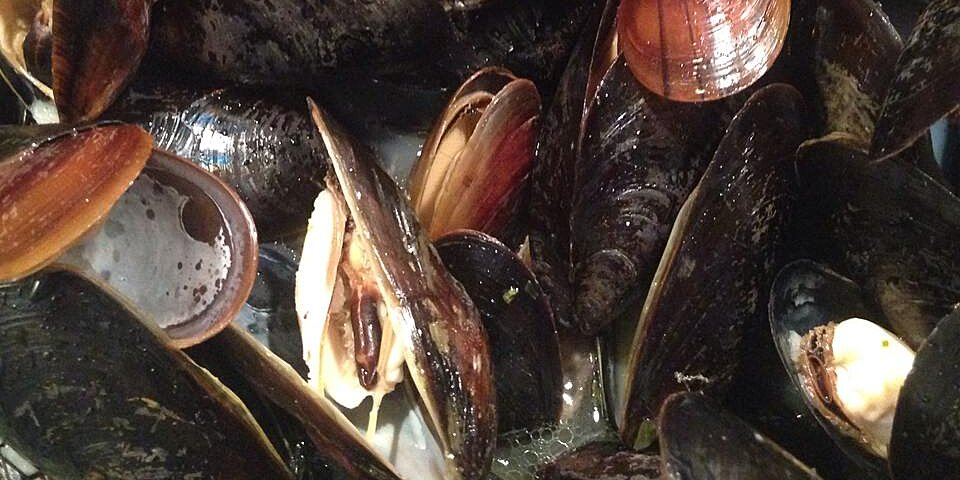 million dollar mussels recipe