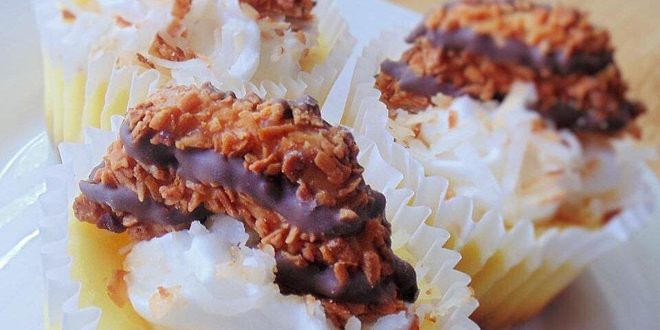samoa cheesecake cupcakes recipe
