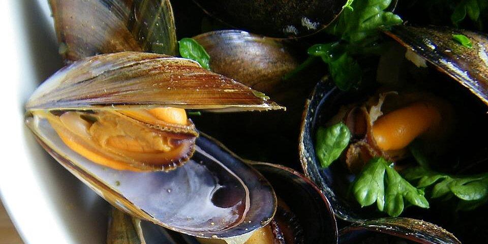drunken mussels