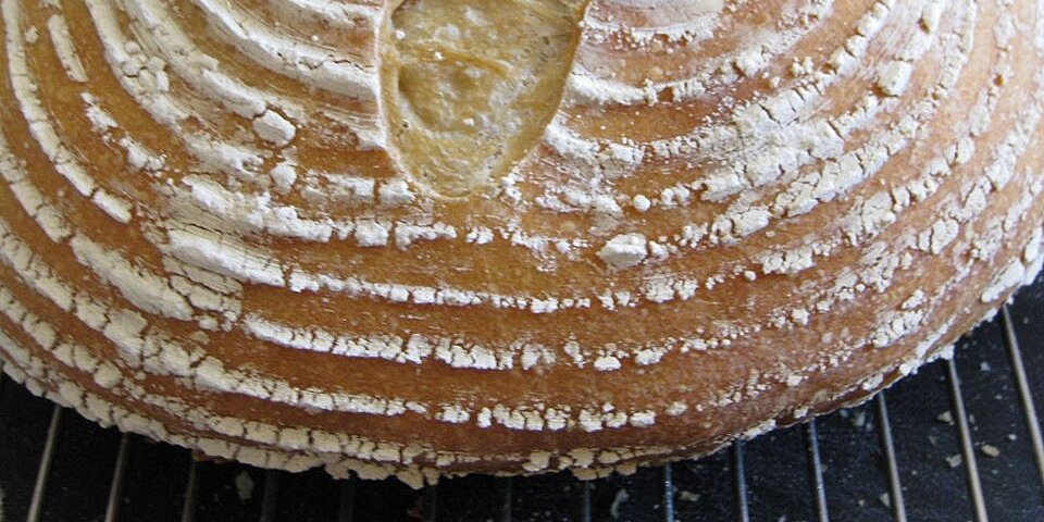 french country bread recipe